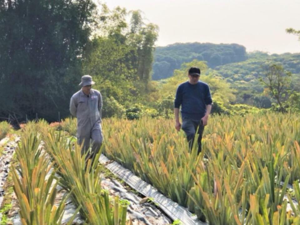 永續發展刻不容緩,科技與農業結合才是王道──悠遊數據